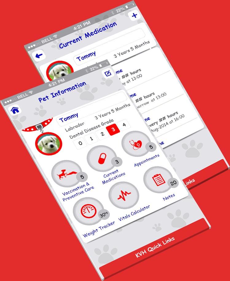 KVM Application